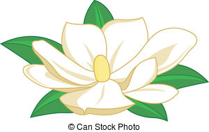 Magnolia Blossom clipart #19, Download drawings