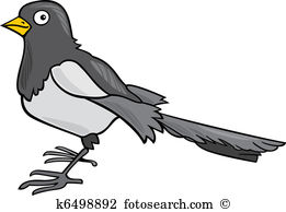 Magpie clipart #19, Download drawings