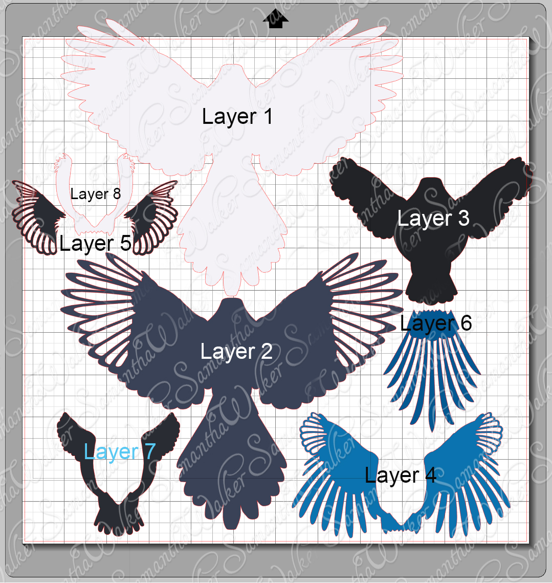 Magpie svg #9, Download drawings
