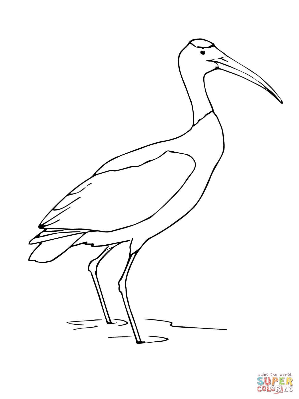 Stork coloring #15, Download drawings