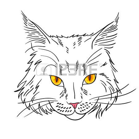 Maine Coon clipart #19, Download drawings