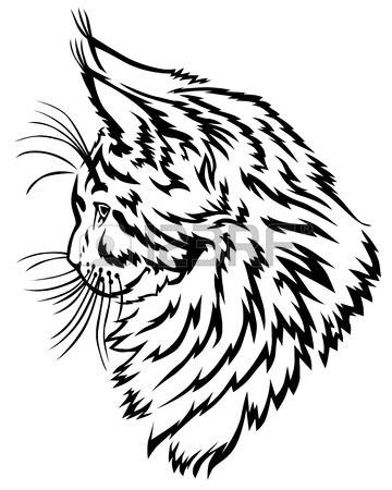 Maine Coon clipart #20, Download drawings