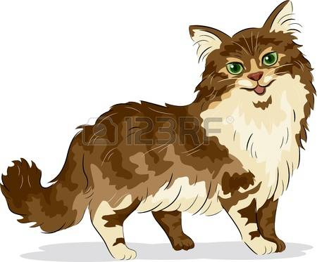 Maine Coon clipart #17, Download drawings