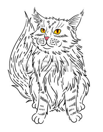 Maine Coon clipart #15, Download drawings
