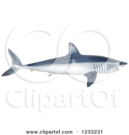 Mako Shark clipart #7, Download drawings