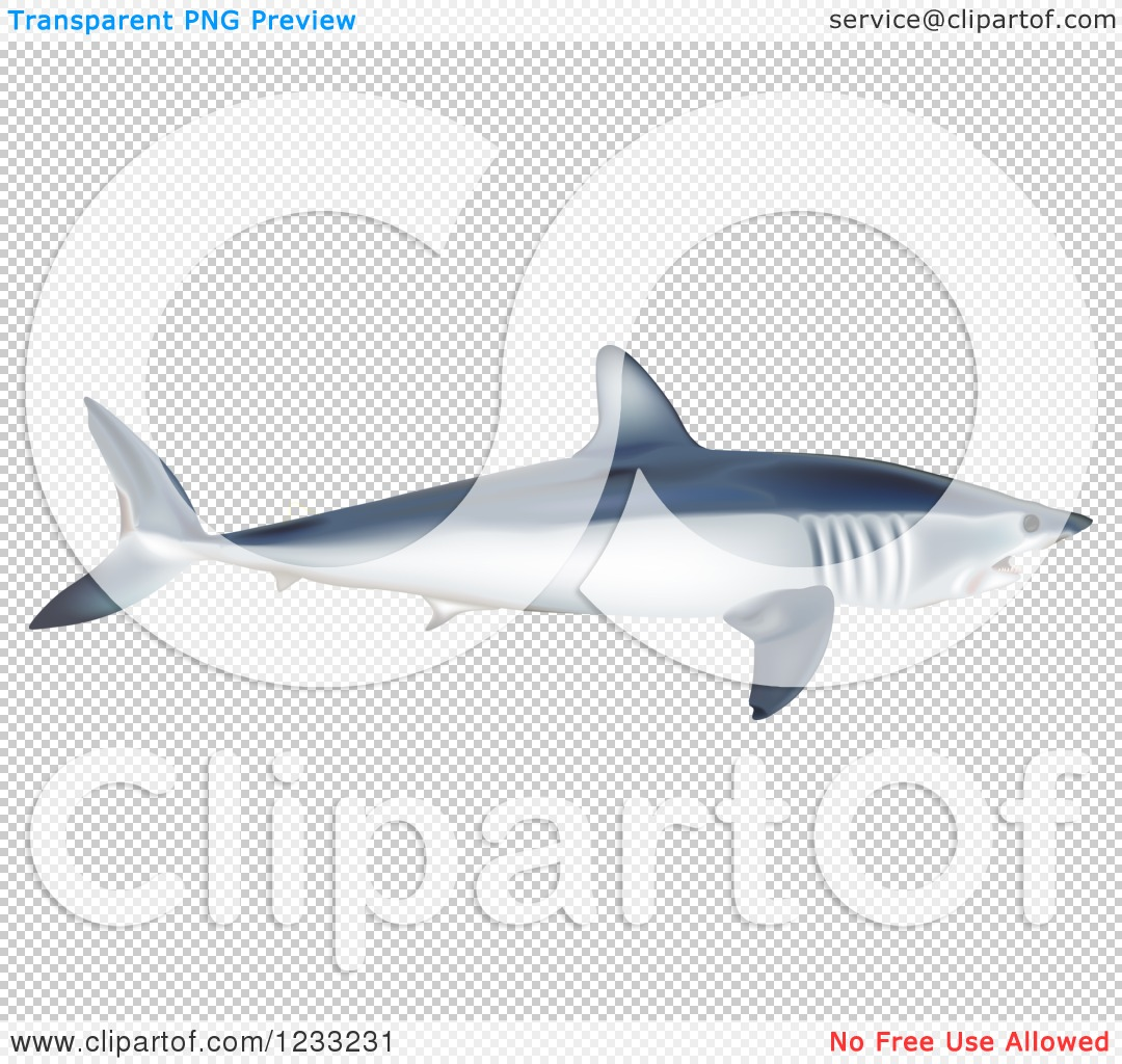 Mako Shark clipart #19, Download drawings
