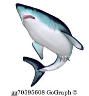 Mako Shark clipart #12, Download drawings