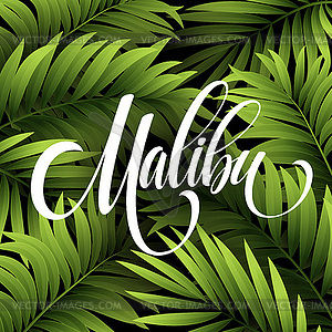 Malibu clipart #4, Download drawings