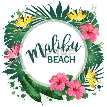 Malibu clipart #14, Download drawings