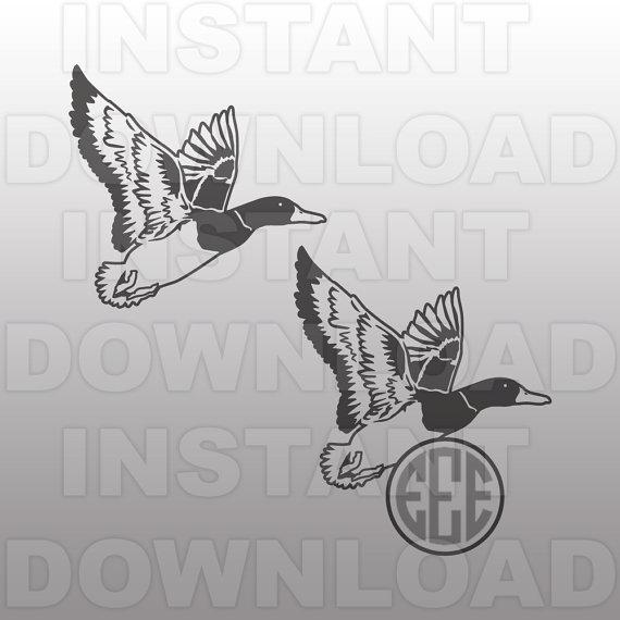 Mallard svg #19, Download drawings