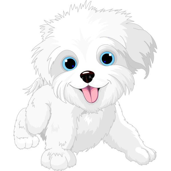 Maltese clipart #9, Download drawings