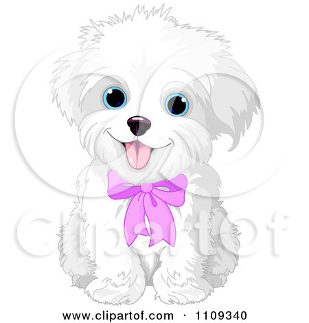 Maltese clipart #14, Download drawings