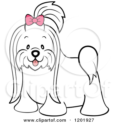 Maltese clipart #8, Download drawings