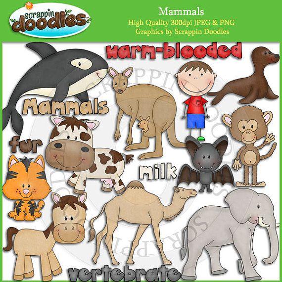Mammal clipart #8, Download drawings