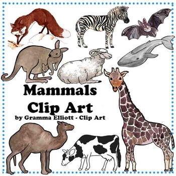 Mammal clipart #6, Download drawings