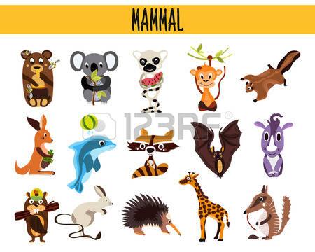 Mammal clipart #1, Download drawings