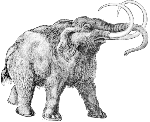 Mammoth clipart #9, Download drawings
