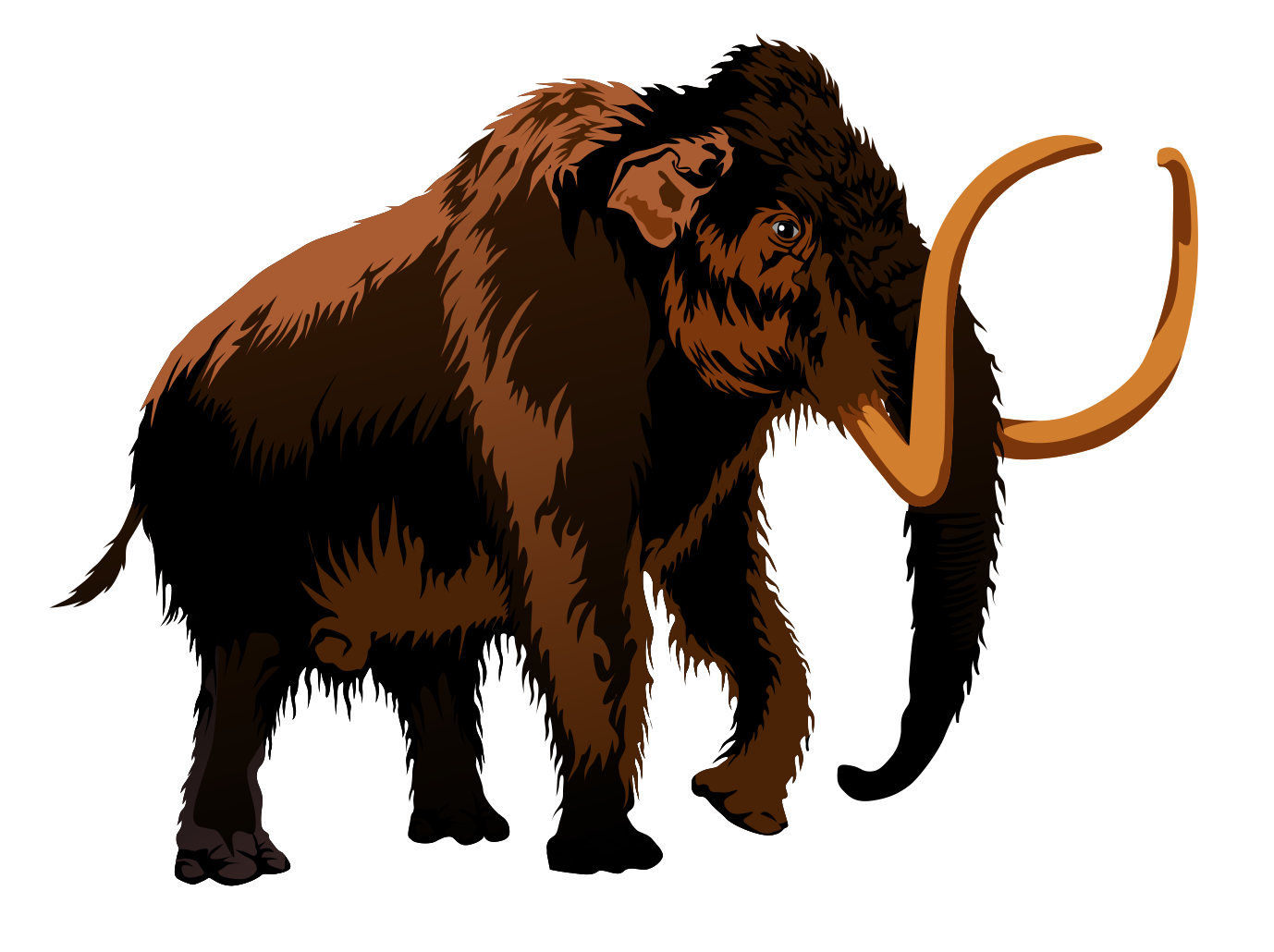 Mammoth clipart #13, Download drawings