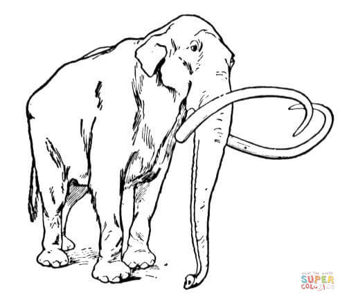 Woolly Mammoth coloring #12, Download drawings