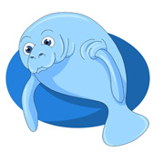 Manatee clipart #8, Download drawings