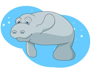 Manatee clipart #2, Download drawings