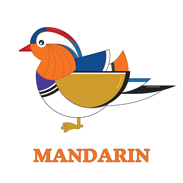 Mandarin Duck clipart #3, Download drawings