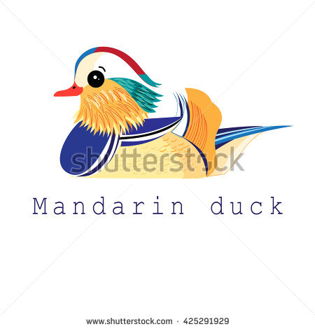 Mandarin Duck clipart #9, Download drawings