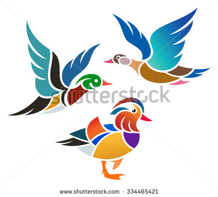 Mandarin Duck clipart #6, Download drawings