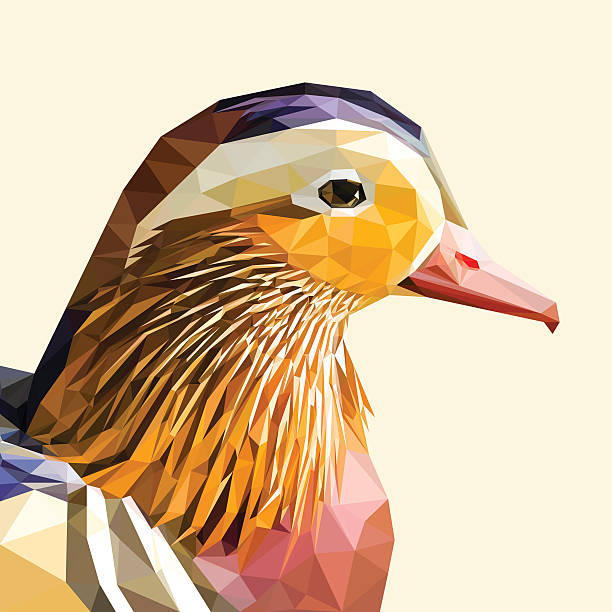 Mandarin Duck clipart #4, Download drawings