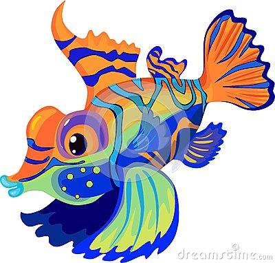 Mandarinfish clipart #8, Download drawings