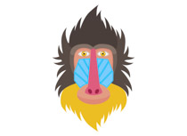Mandrill clipart #12, Download drawings