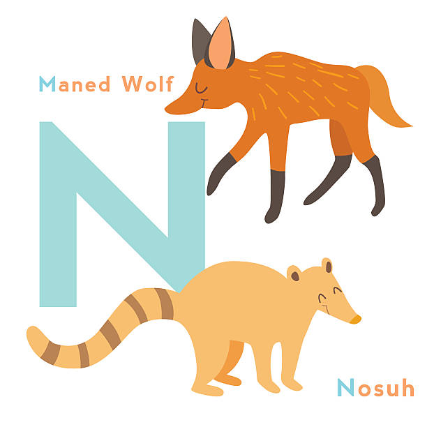 Maned Wolf clipart #12, Download drawings