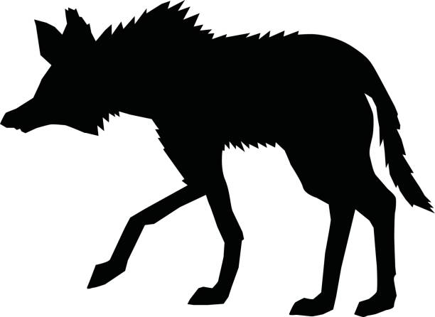 Maned Wolf clipart #8, Download drawings