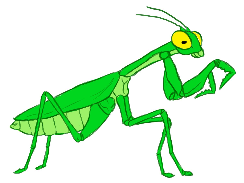 Praying Mantis clipart #4, Download drawings