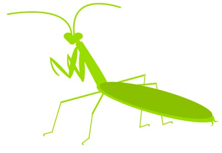 Mantis clipart #13, Download drawings