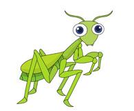 Praying Mantis clipart #20, Download drawings