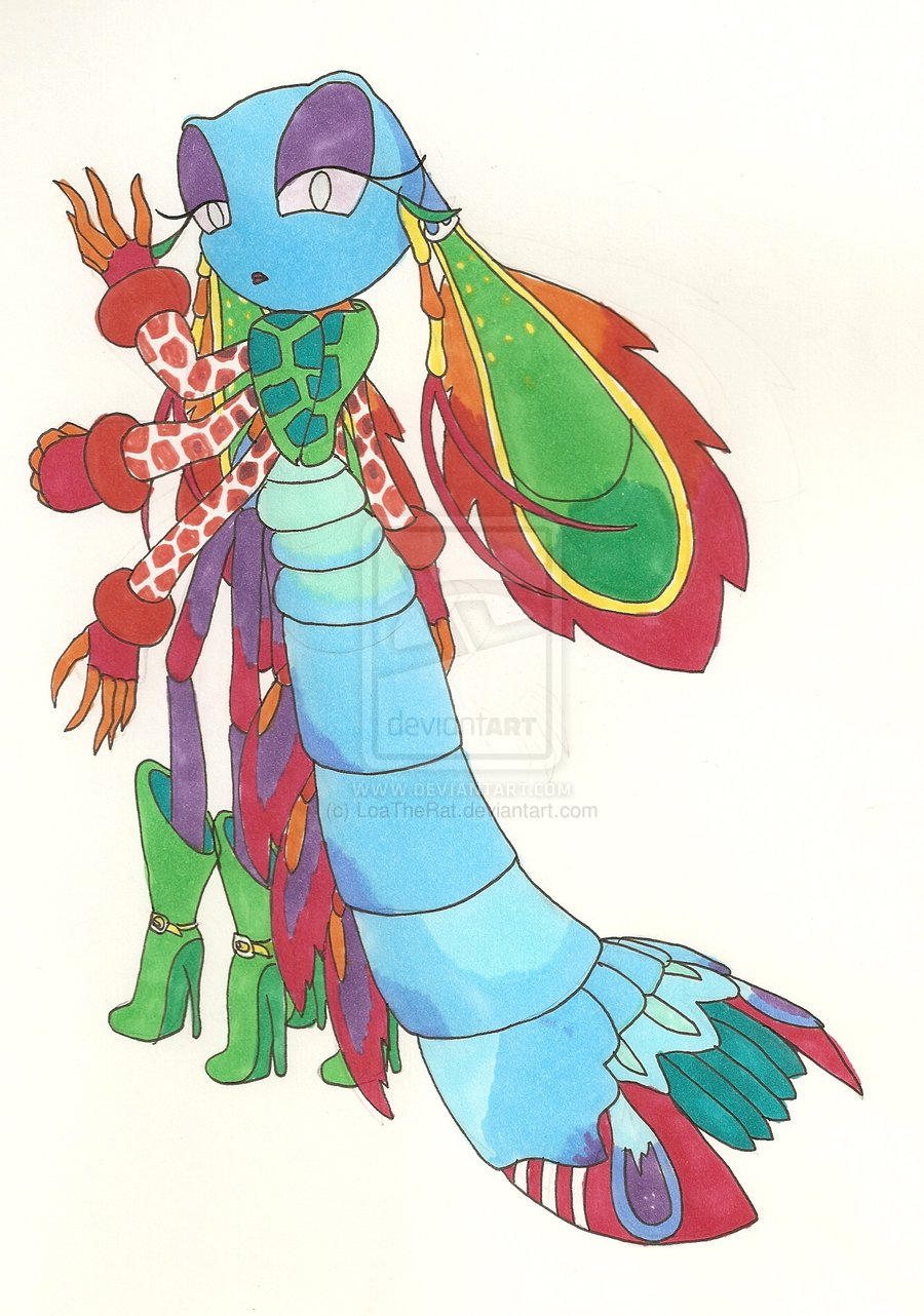 Mantis Shrimp clipart #3, Download drawings