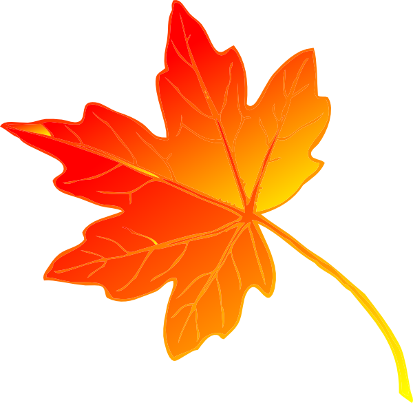 Maple Leaf clipart #13, Download drawings