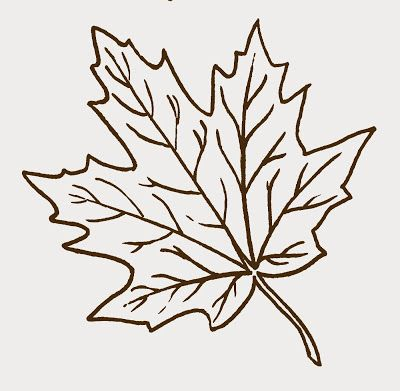 Maple Leaf clipart #17, Download drawings
