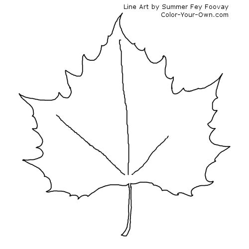 Maple Leaf coloring Download Maple