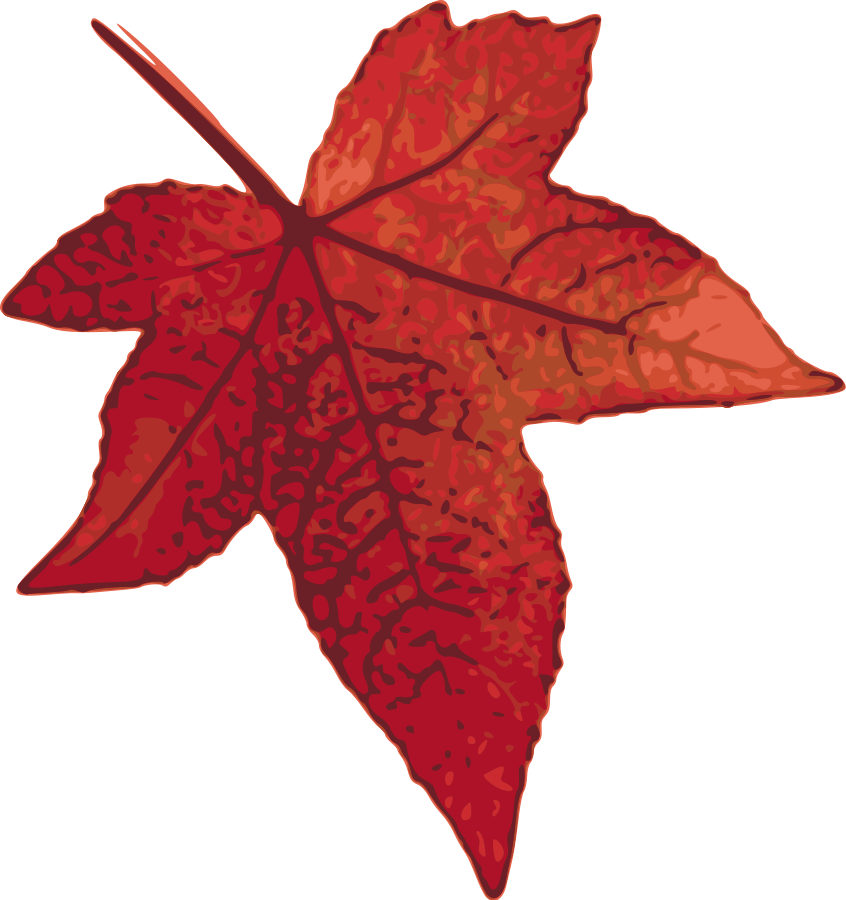 Maple Leaf svg #3, Download drawings