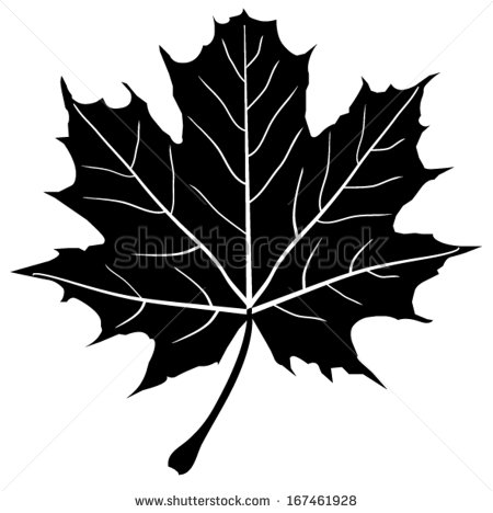 Maple Leaf svg #15, Download drawings
