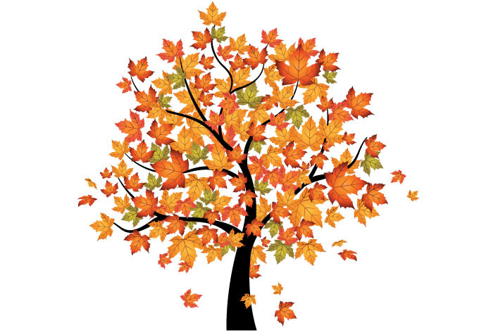 Maple Tree clipart #14, Download drawings