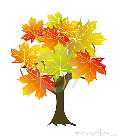 Maple Tree clipart #15, Download drawings