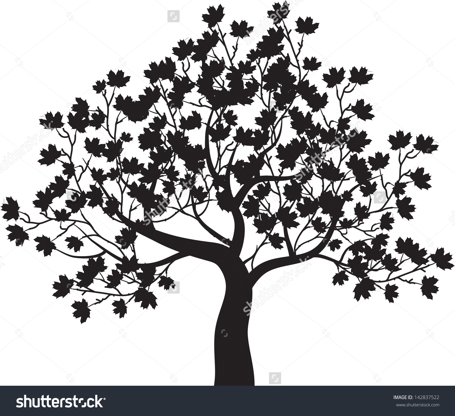 Maple Tree clipart #12, Download drawings
