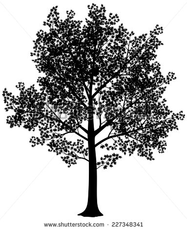 Maple Tree svg #18, Download drawings