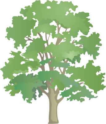 Maple Tree svg #20, Download drawings