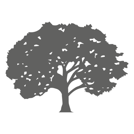 Maple Tree svg #9, Download drawings