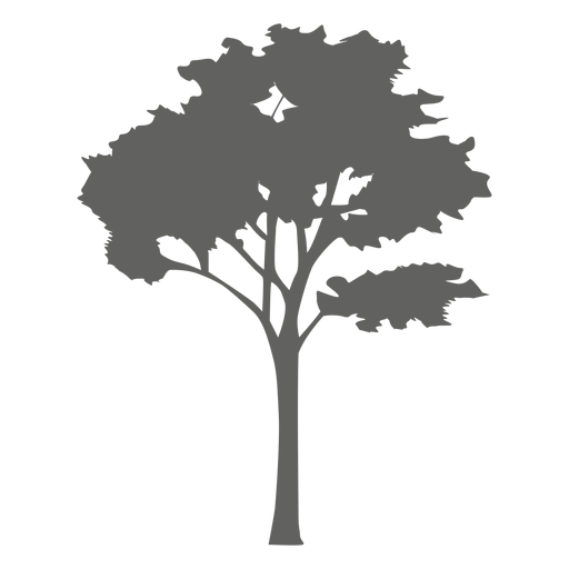 Maple Tree svg #8, Download drawings