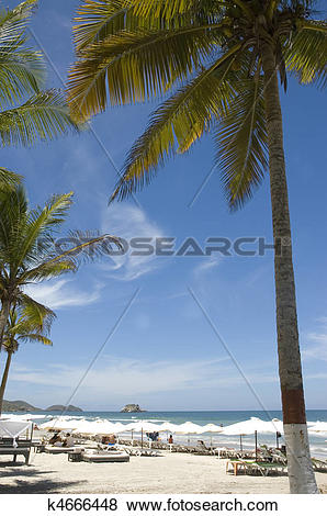 Margarita Island clipart #14, Download drawings